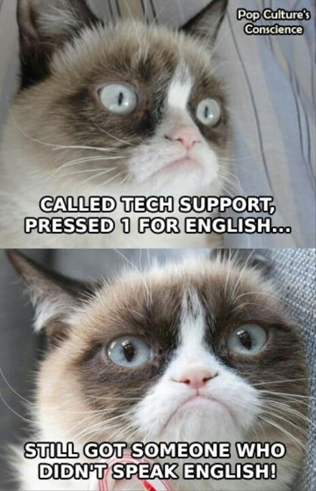 Funny Cats Top 49 Most Funniest Grumpy Cat Quotes 3jpg 620x962