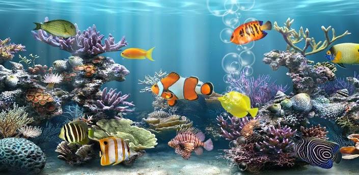 DroidPK Fish Aquarium 12 Apk for Android 705x344