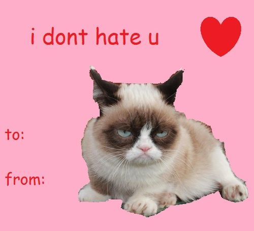 grumpy cat valentine 500x455