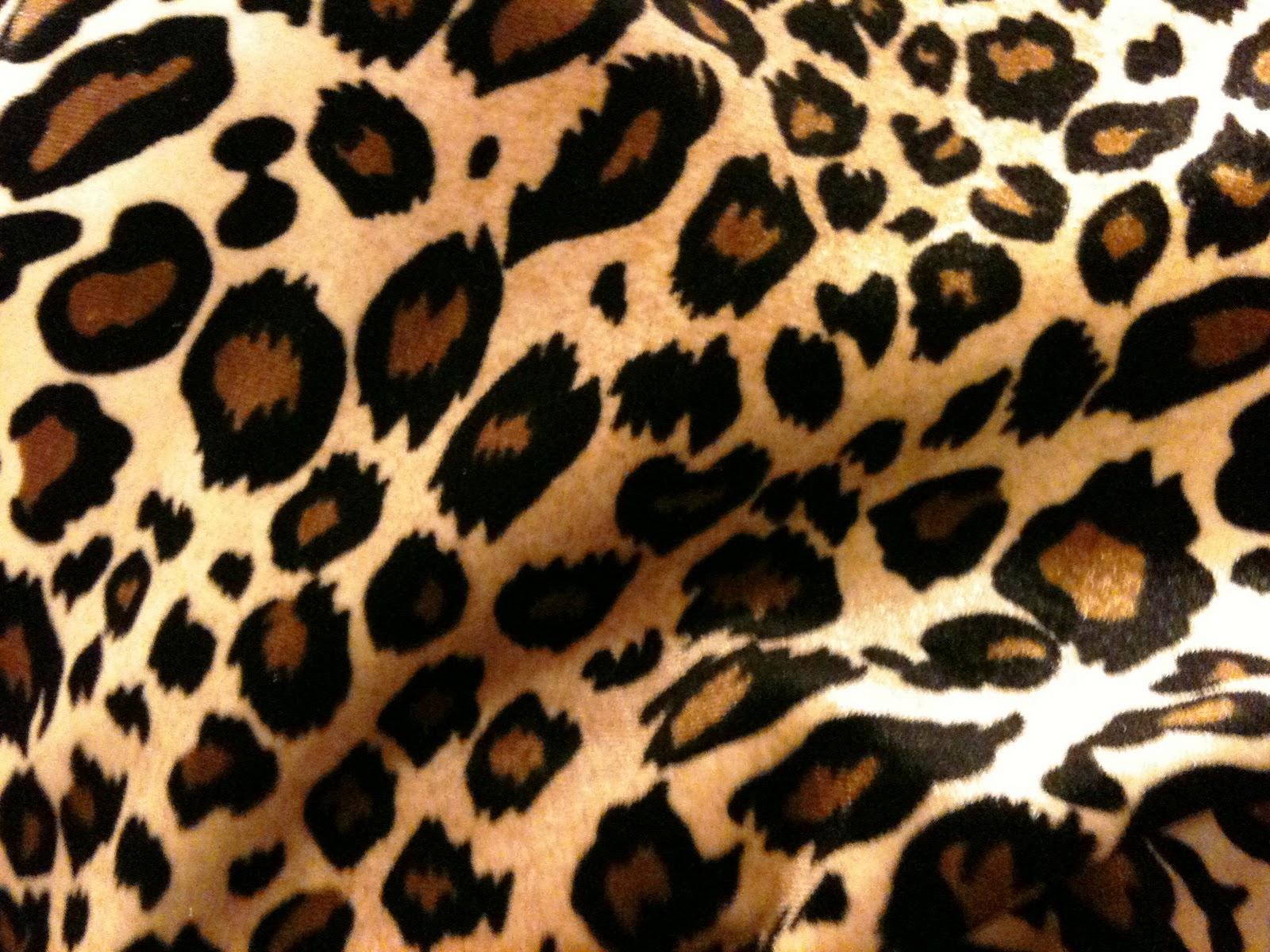 [70+] Cheetah Background Pictures On WallpaperSafari
