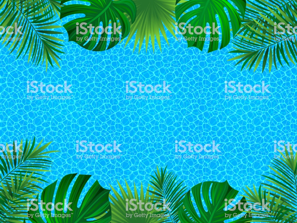 Tropical Frame Tropic Invitation Card Water Surface Background 1024x768