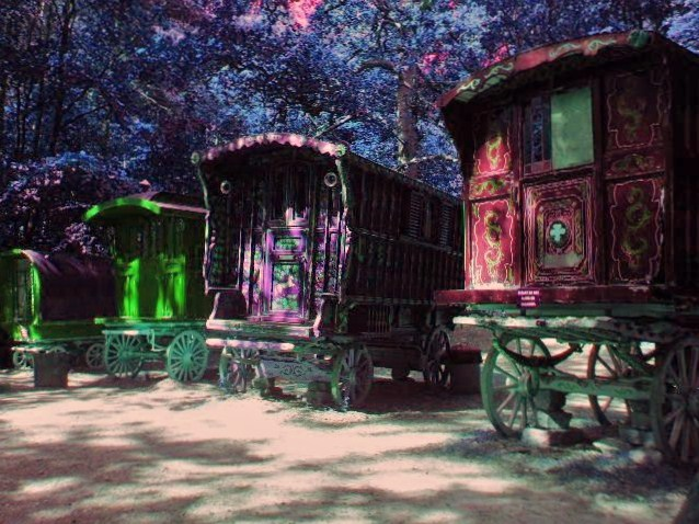 [44+] Beautiful Gypsy ...