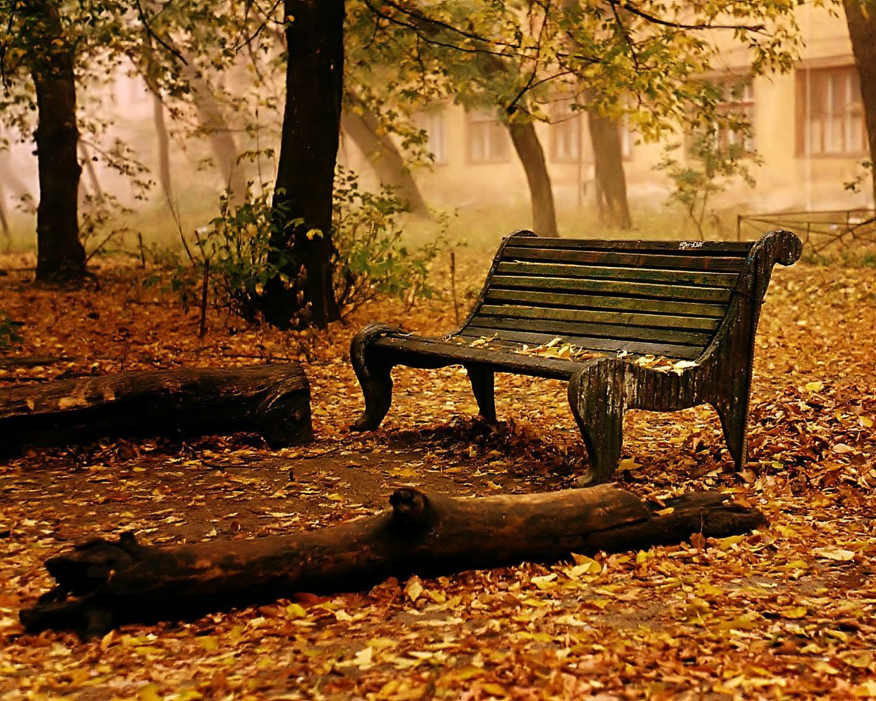 Autumn wallpaper   Autumn Wallpaper 9444937 1280x1024