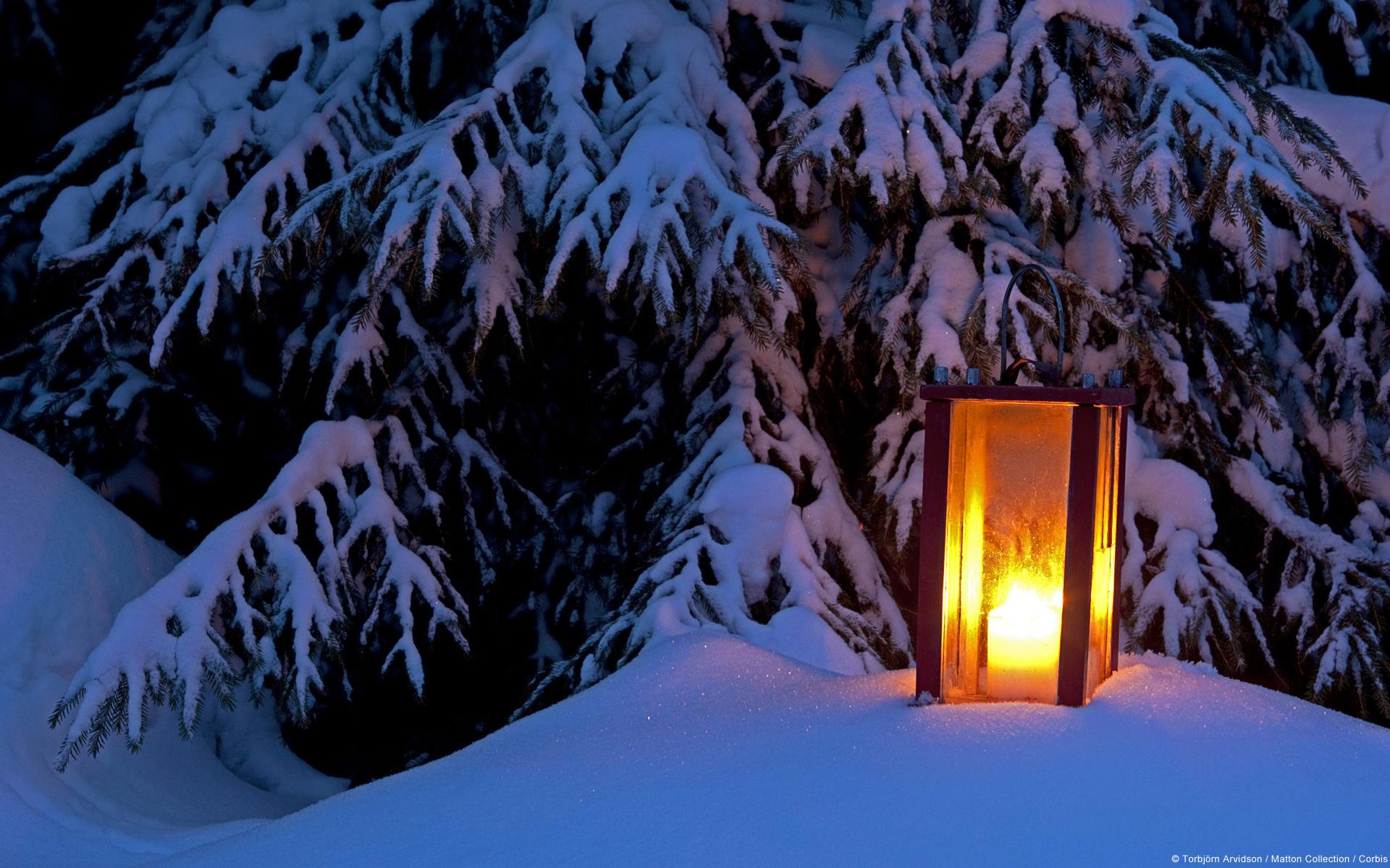 Animated Outdoor Christmas Lights