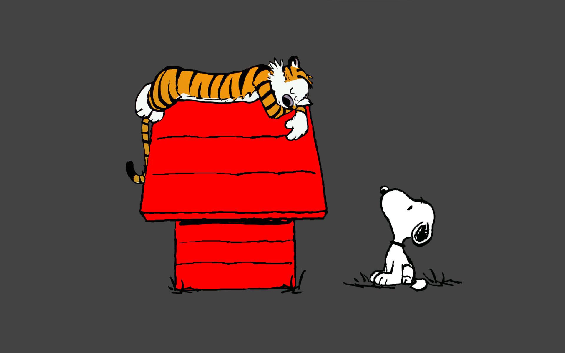 Calvin and Hobbes Snoopy Sleep peanuts tiger wallpaper 1920x1200 1920x1200