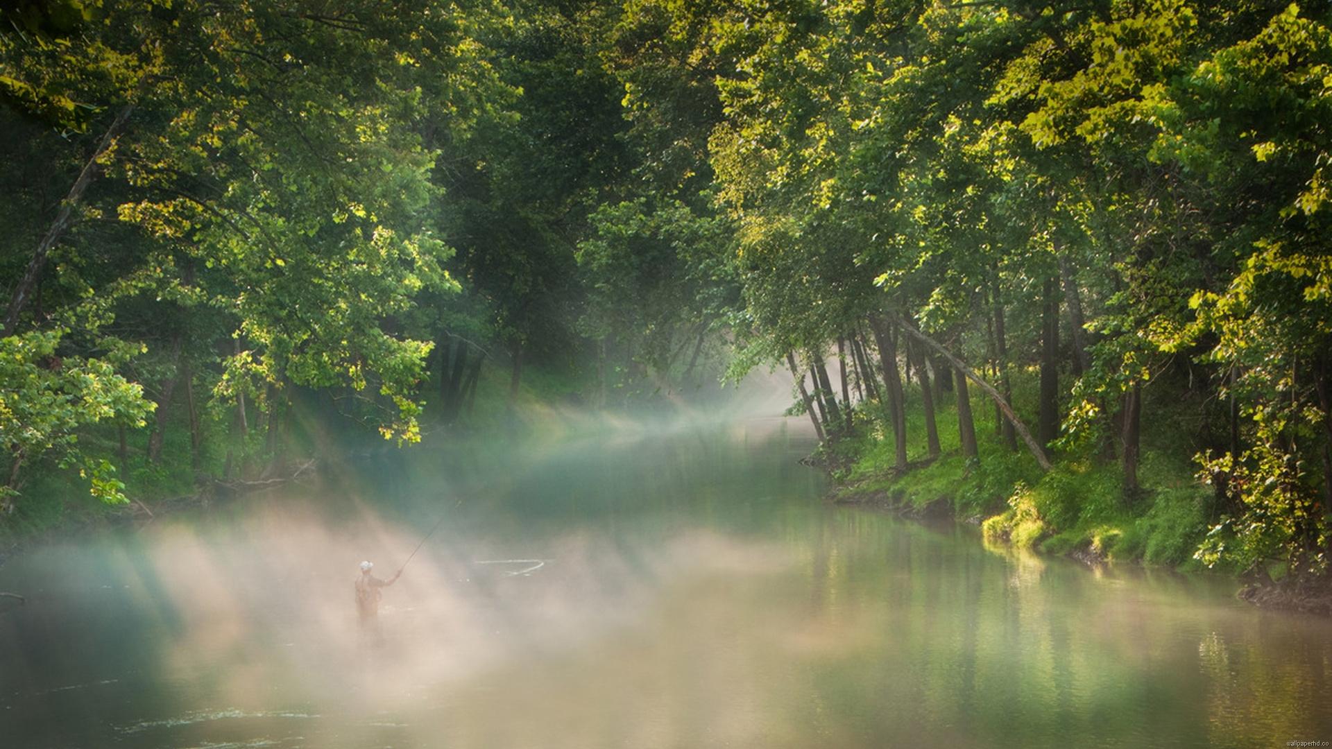 Туман над лесной речкой  № 636693 бесплатно