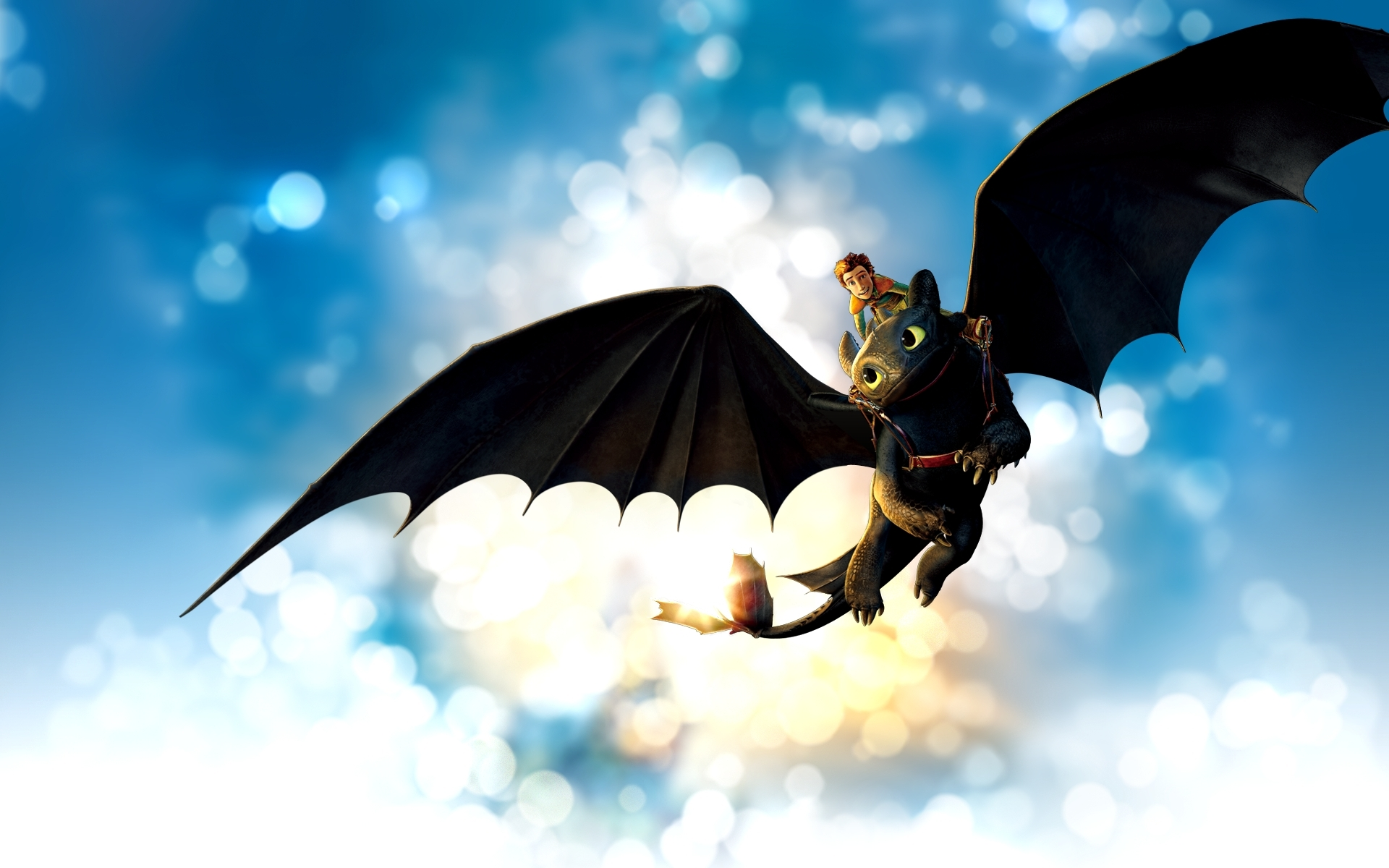 How To Train Your Dragon Wallpaper Toothless 1 Widescreen 1920x1200