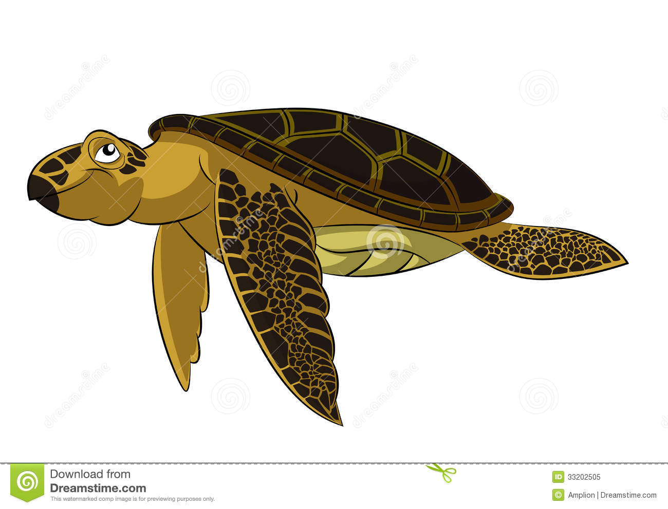 Dream About Sea Turtles for Pinterest 1300x991