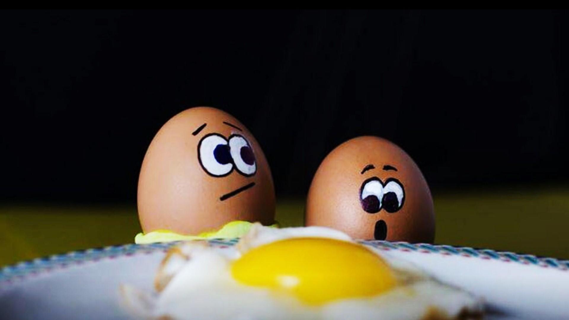 Funny Eggs Best Wallpaper 43502   Baltana 1920x1080