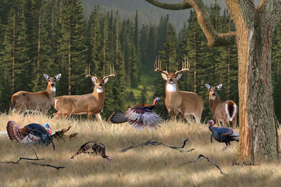 whitetail deer art whitetail kings fine art whitetail deer art print 900x600