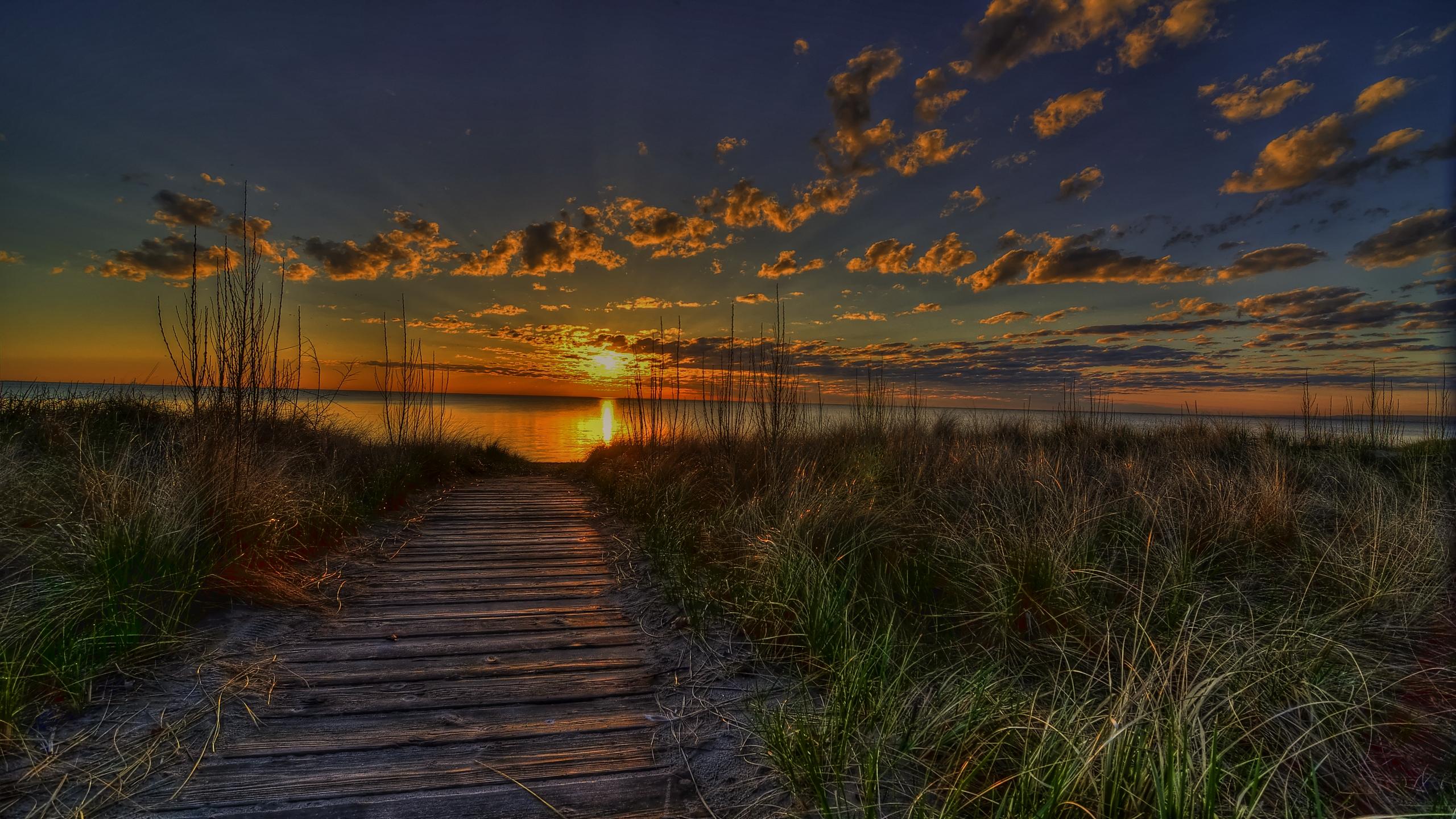 tramonto estivo File vettoriale   ForWallpapercom 2560x1440