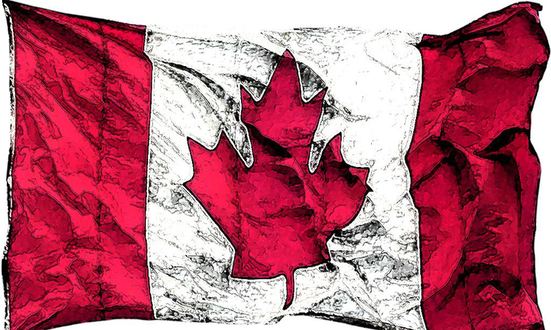 collection of beautiful canadian leaf wallpapers if you enjoy canadian 800x480
