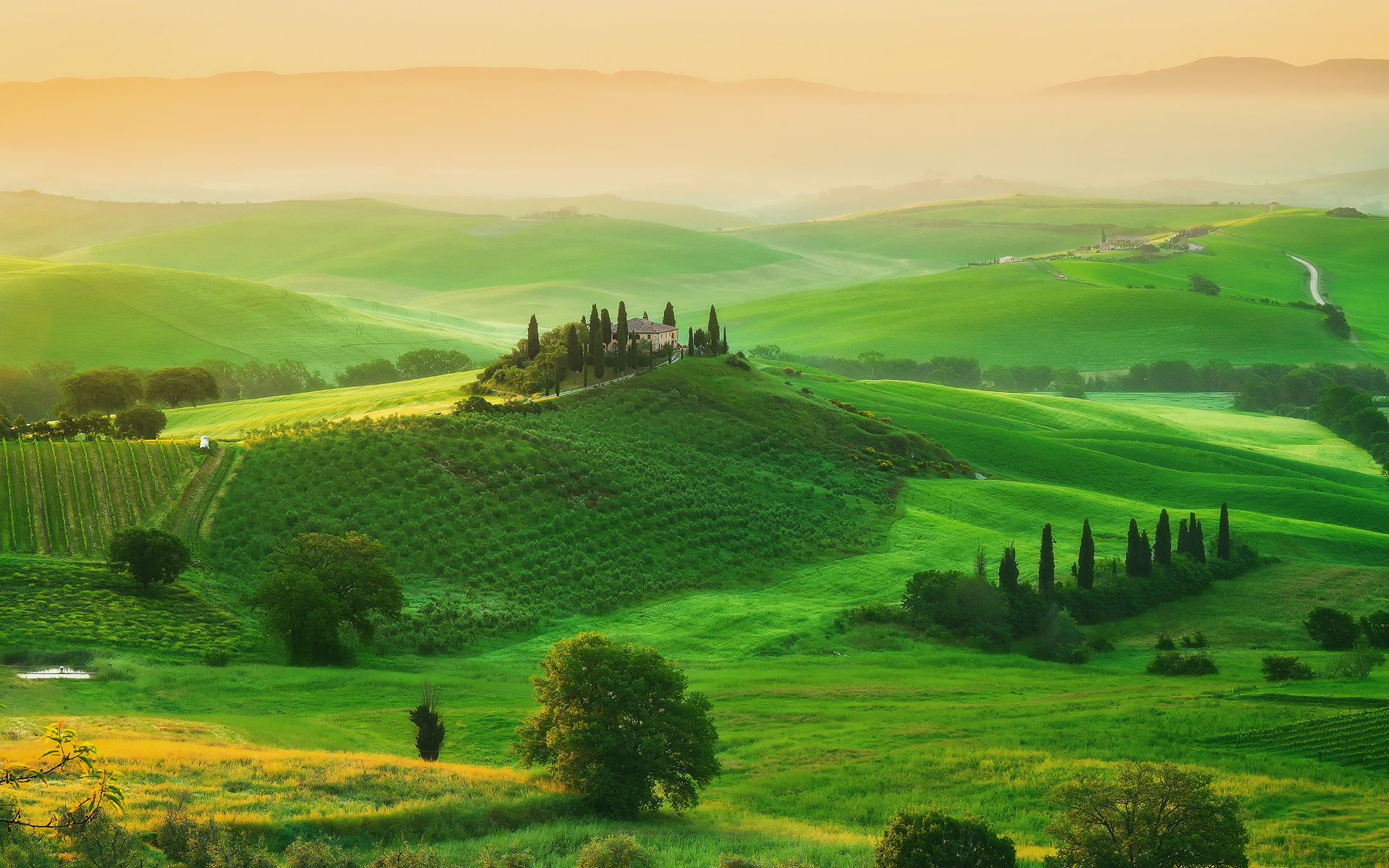 Wallpaper tuscany wallpapersafari for Green italy