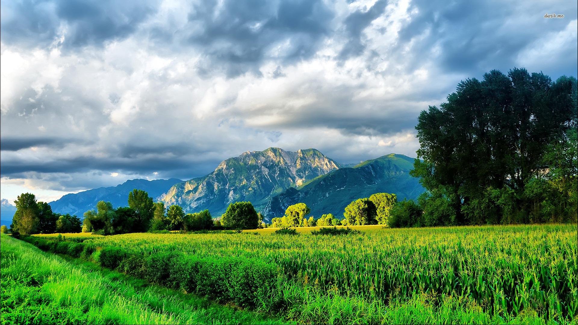 Landscapes hd