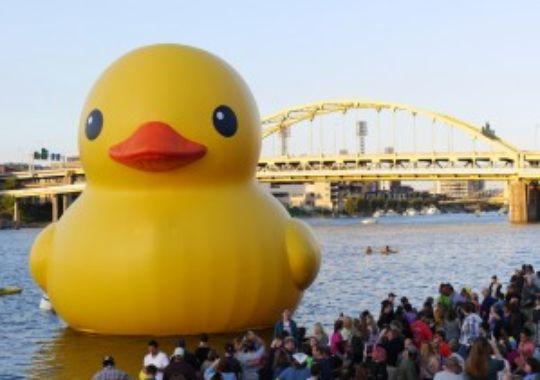 Giant Rubber Duck Wallpaper Giant rubber duck pittsburgh 540x380