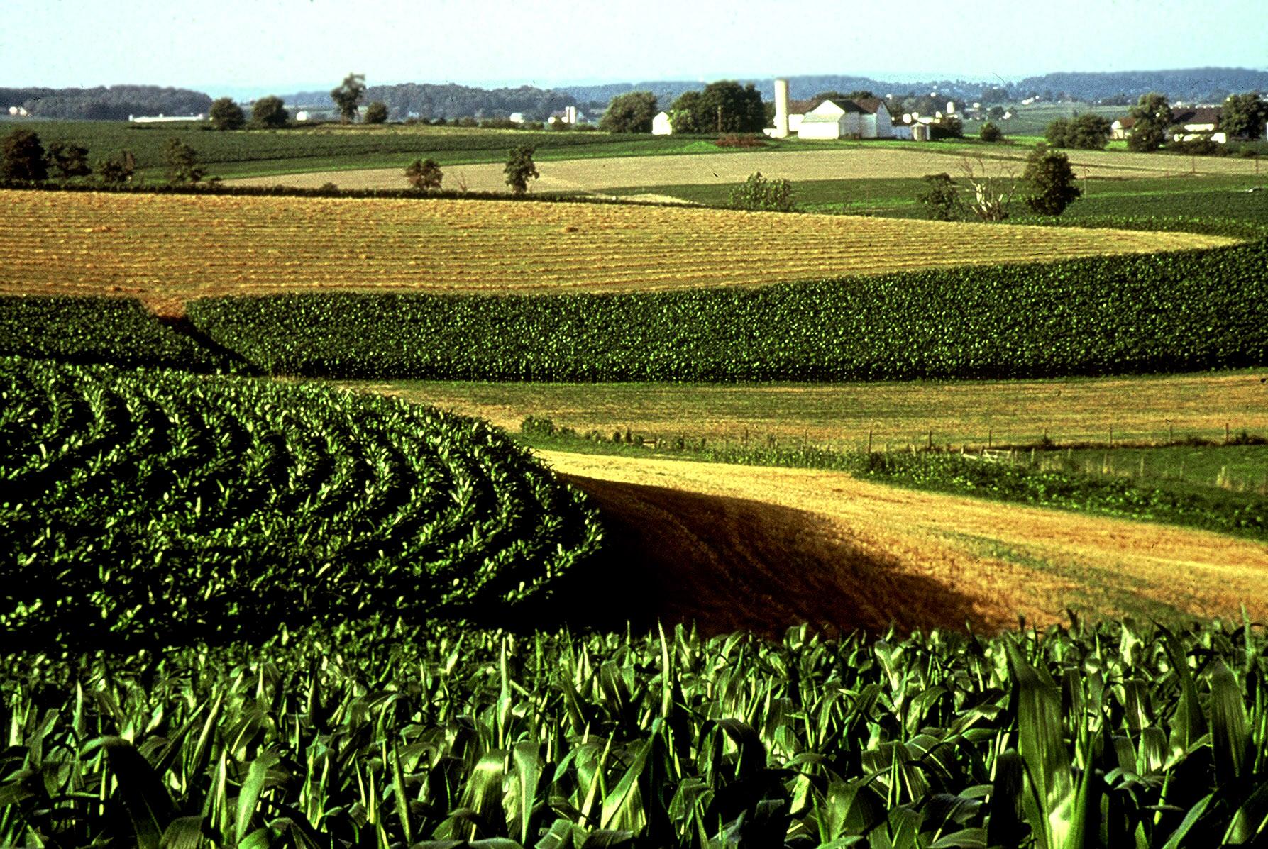 Midwestern Region 1787x1197