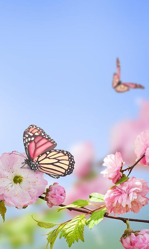 vivid colors then spring flowers