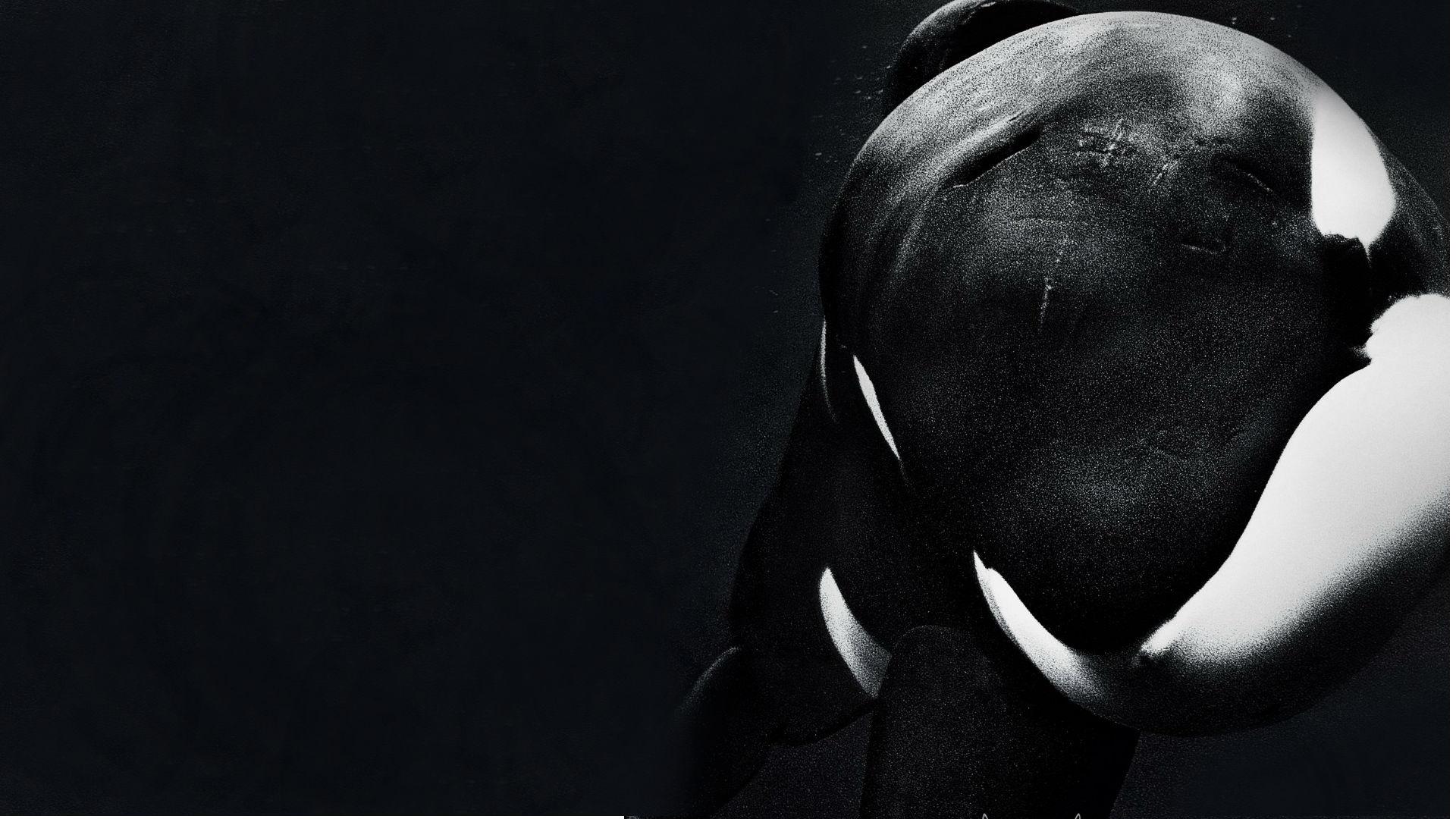 Blackfish 2013 Wallpapers   1920x1080   482586 1920x1080