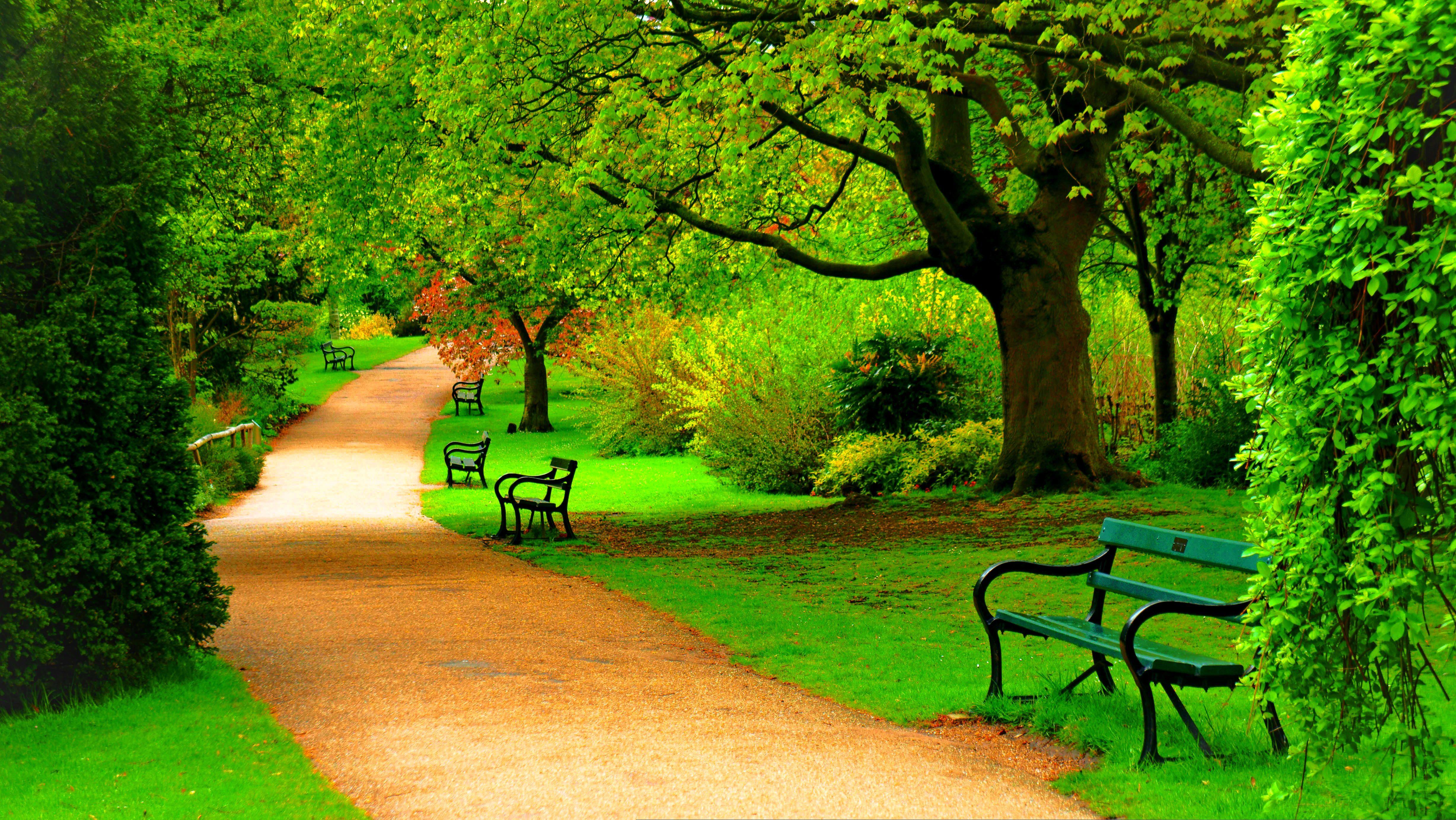 Nature Park Road