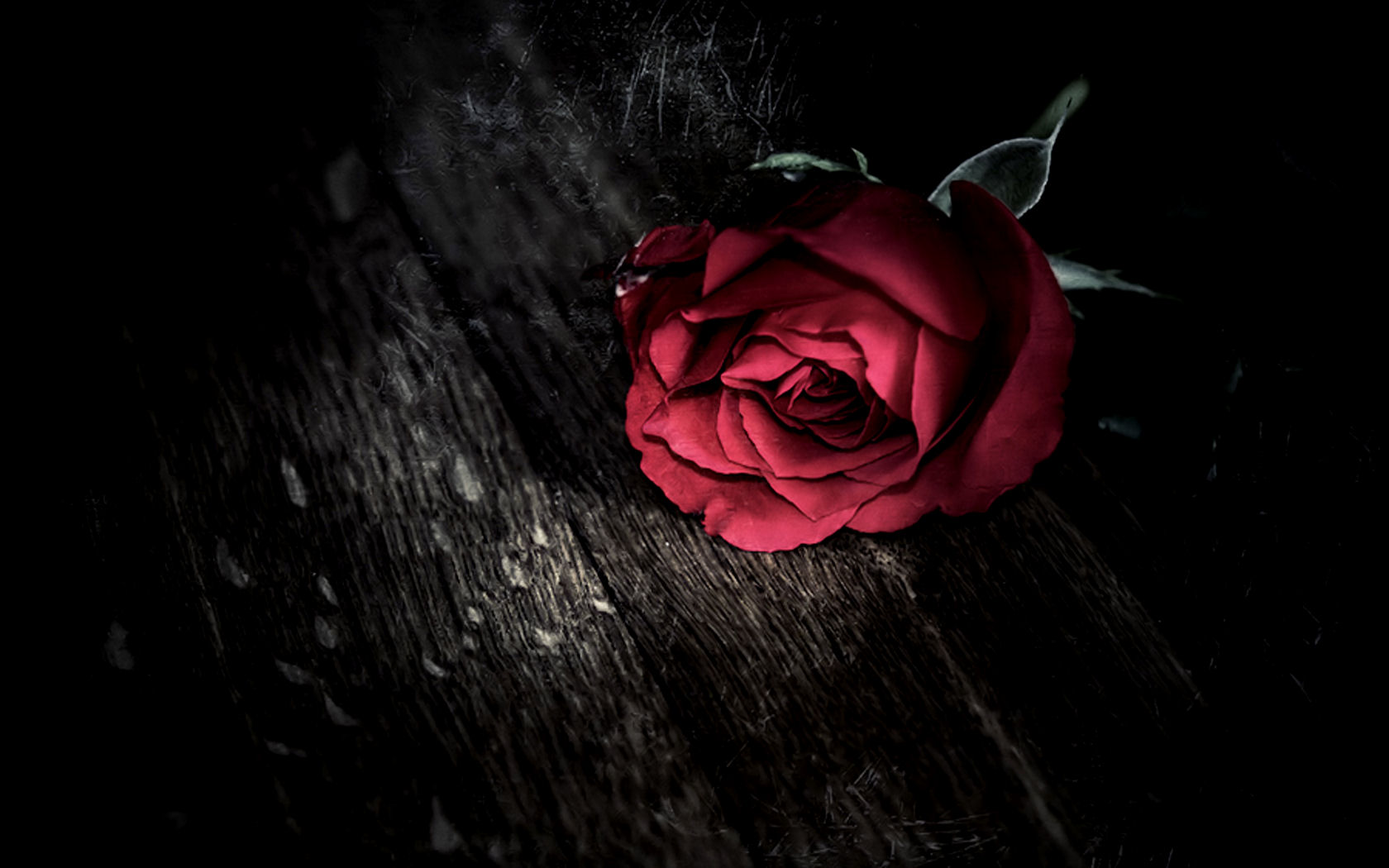 Dark Love Wallpapers 8199 Hd Wallpapers in Love   Imagescicom 1680x1050