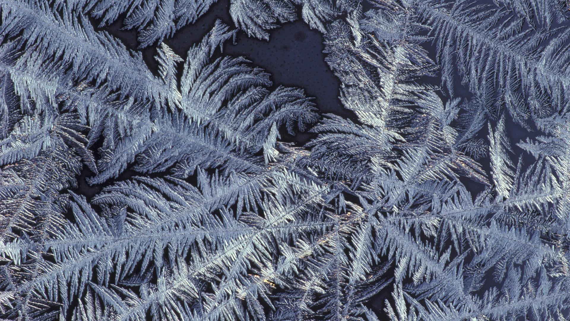 Patterns Frost Wallpaper 1920x1080 Patterns Frost 1920x1080