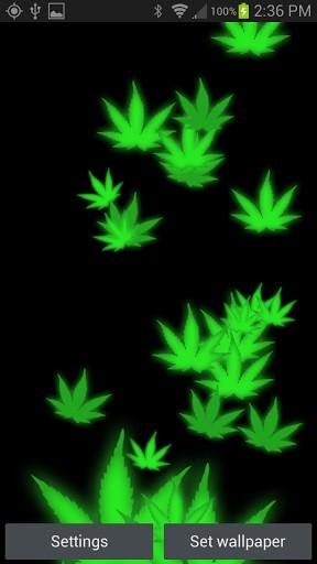 bigger 3D Weed HD Live Wallpaper