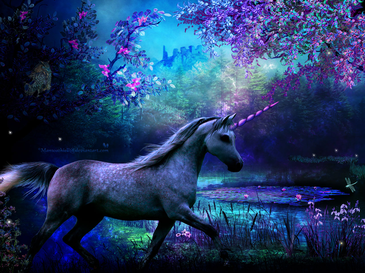 Fantasy   Unicorn Wallpaper 1280x960