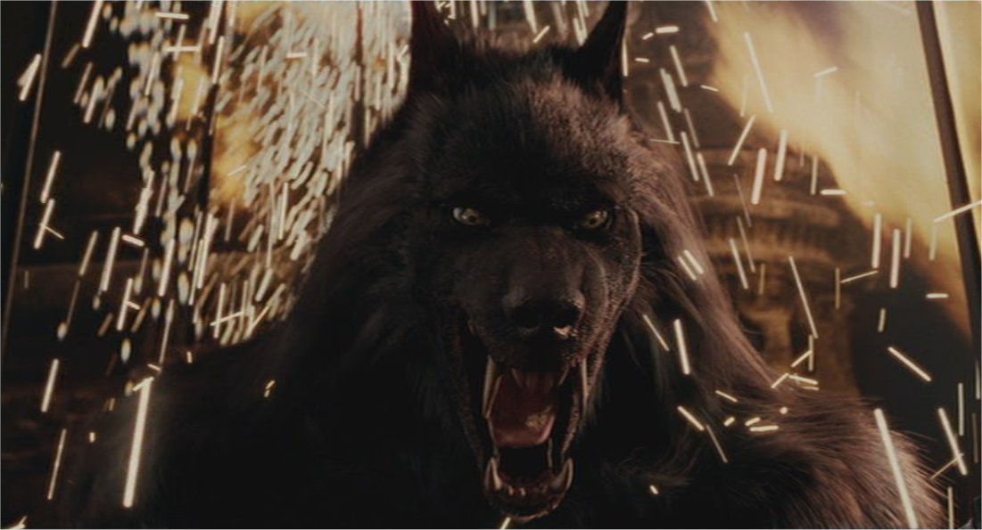 Werewolves Vs Vampires Wallpaper Van Helsing Werewolf W...