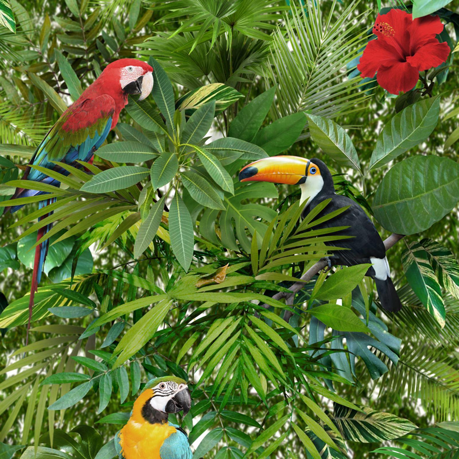 Dettagli su Giungla Tropicale Carta Da Parati Muriva 102555 nuova 1600x1600