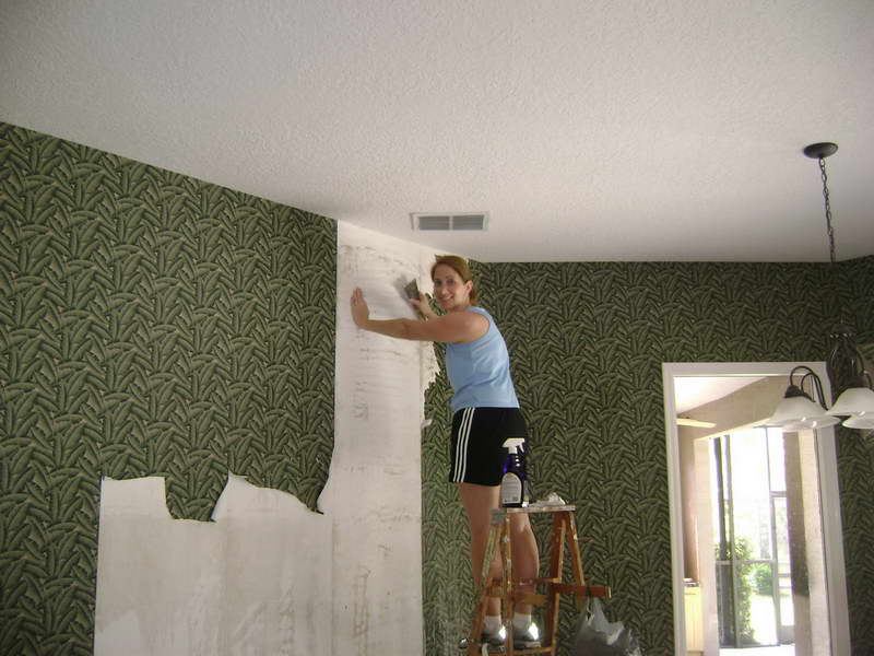 Smart Wallpaper Removal Solution Wallpaper Removal Solution With 800x600