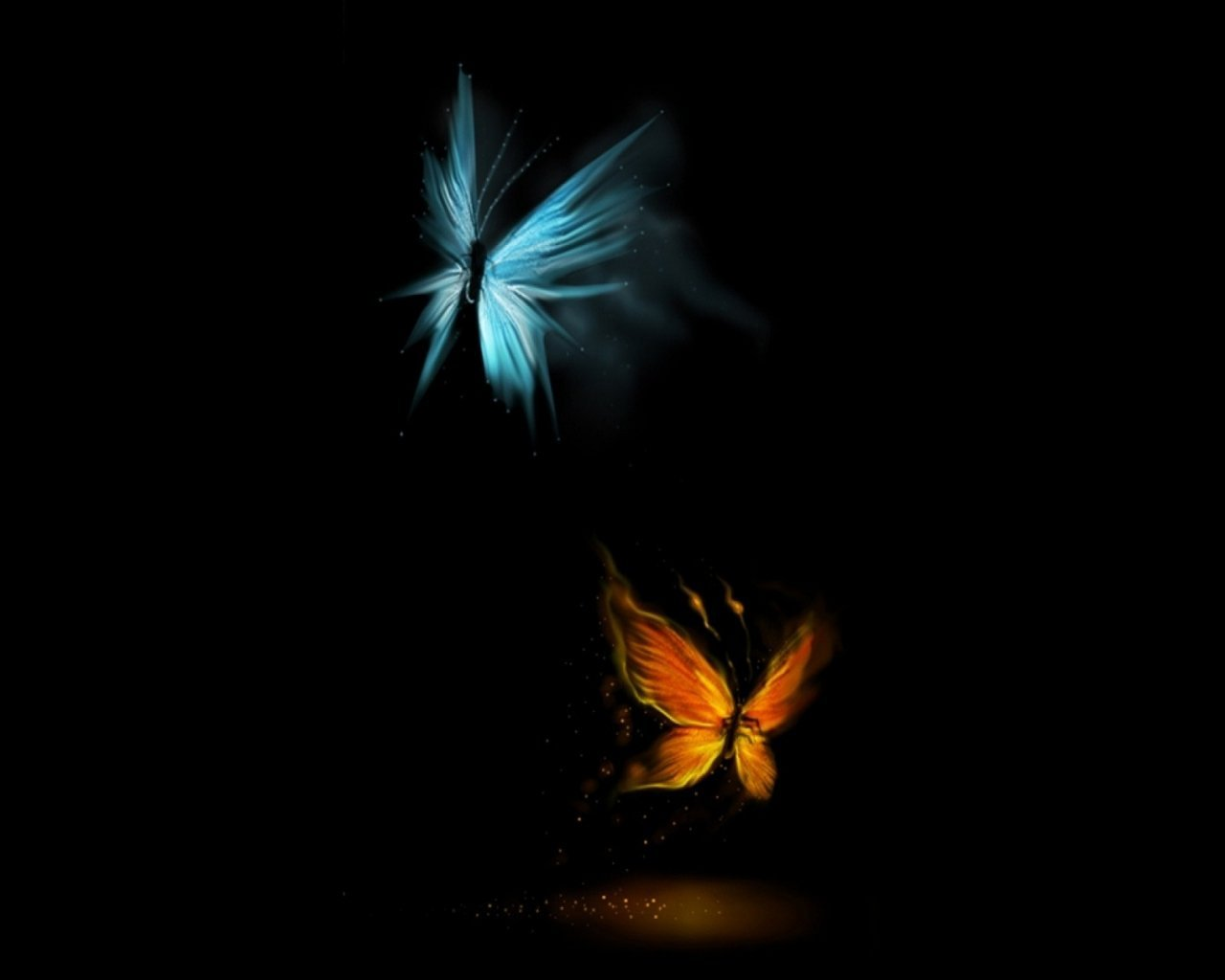 Best Butterfly Effect Wallpapers Butterfly Beautiful Pictures 1280x1024