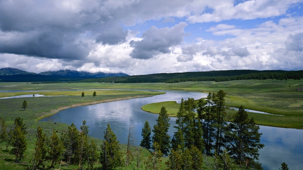 wyoming yellowstone rivers national park Nature National HD Wallpaper 600x337