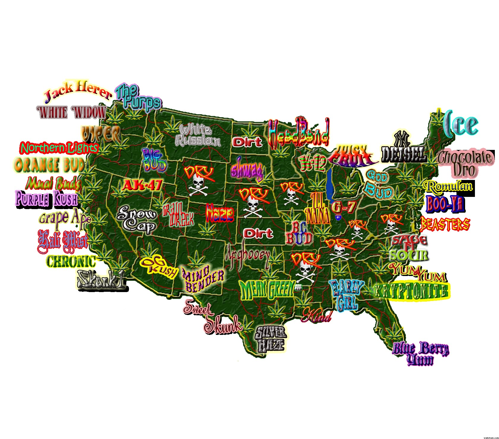 Weed Geography USA 1679x1476