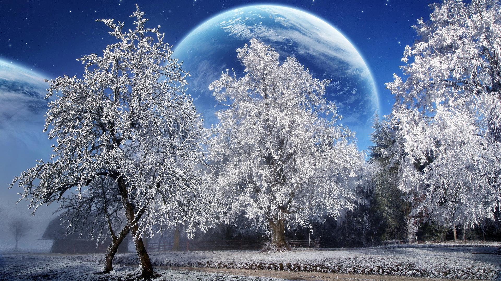 Winter HD 1920x1080 1920x1080