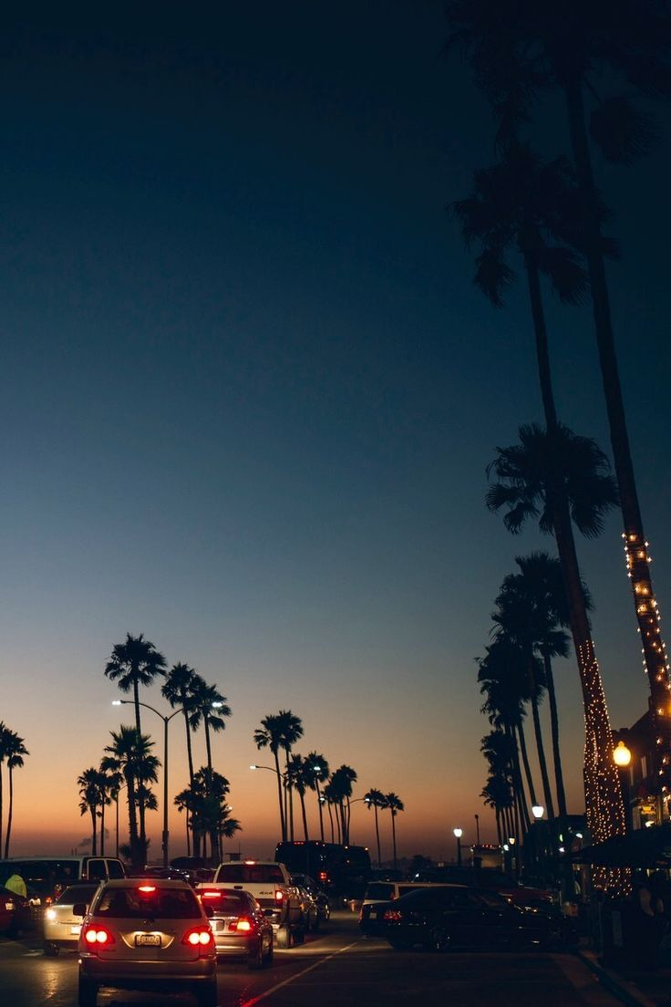 Free Download 30 Venice Beach Sunset Iphone Wallpapers