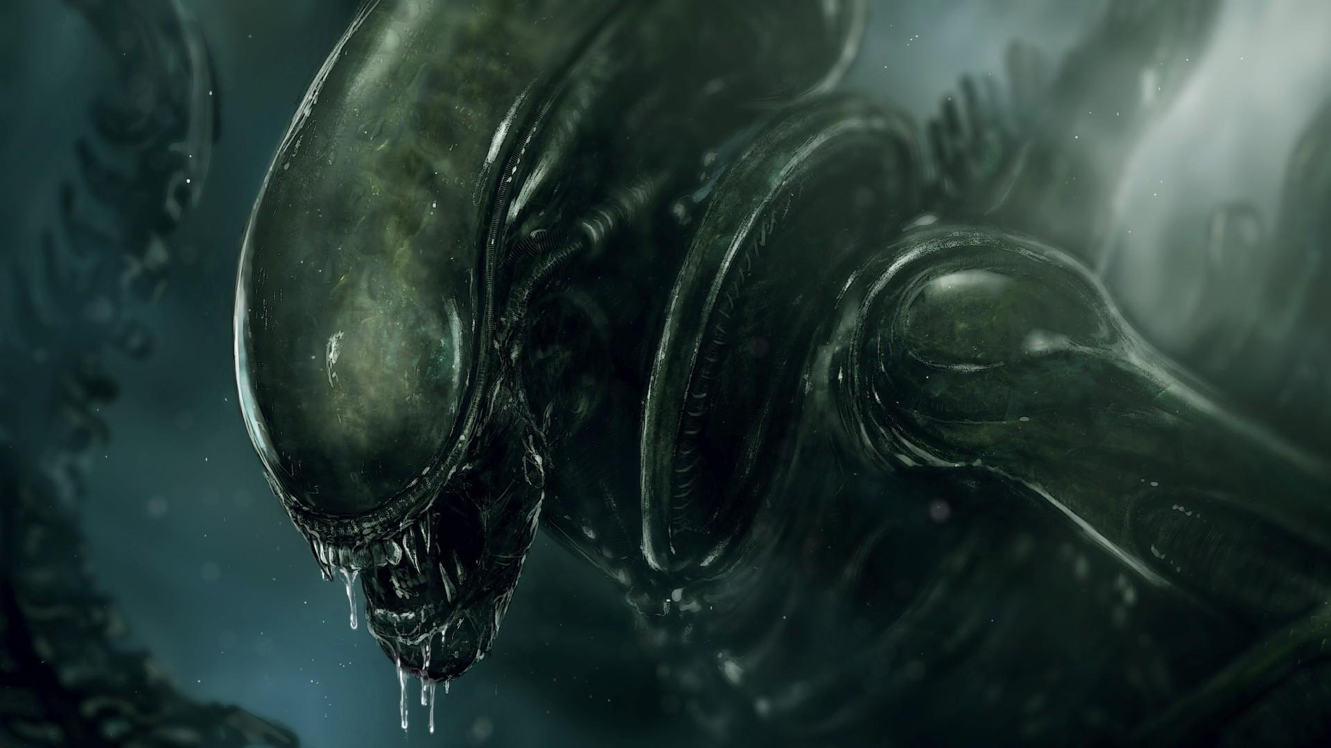 Alien movie Xenomorph Wallpapers HD Desktop and 1920x1080