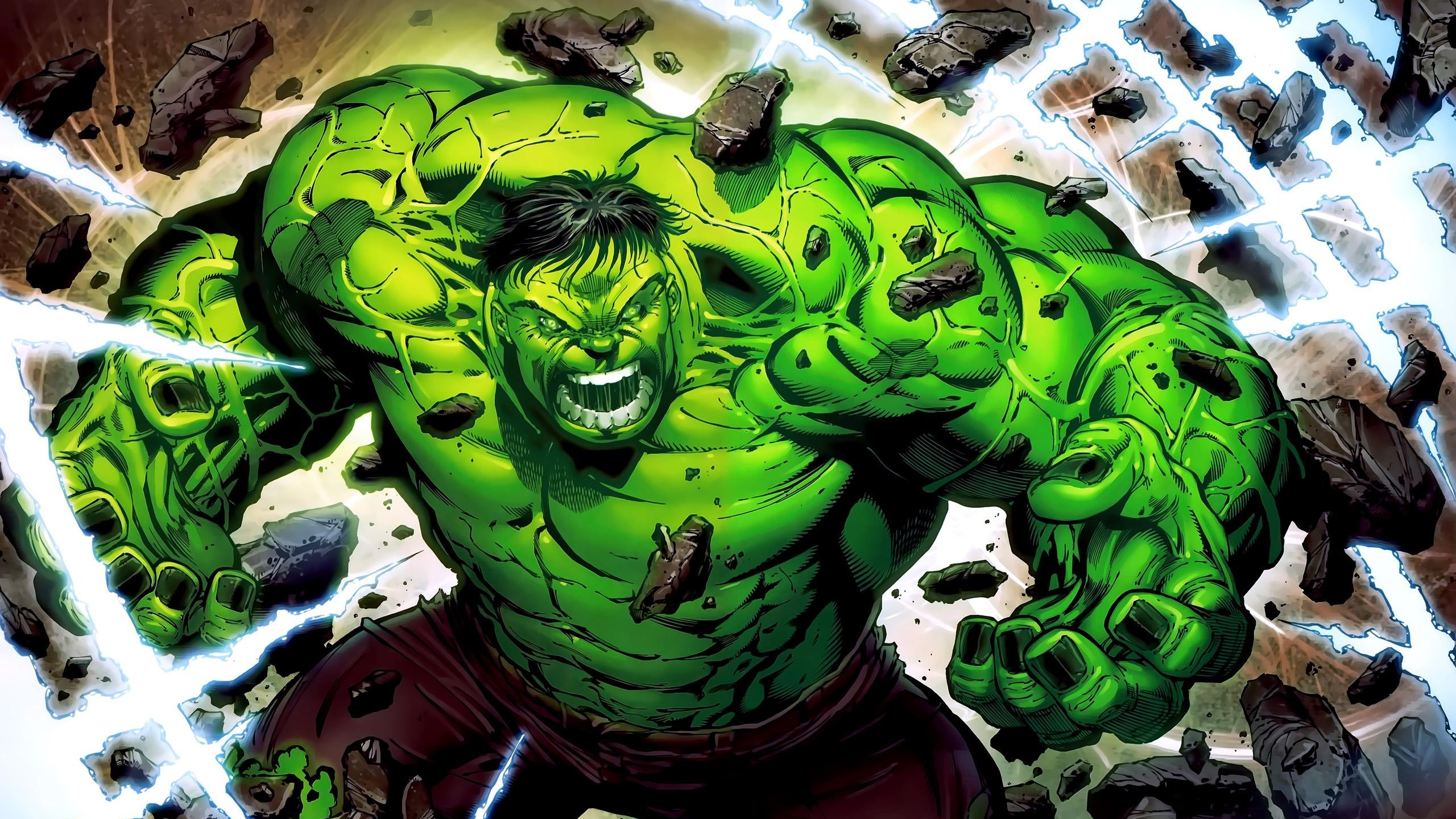 265 Hulk HD Wallpapers Background Images 2560x1440