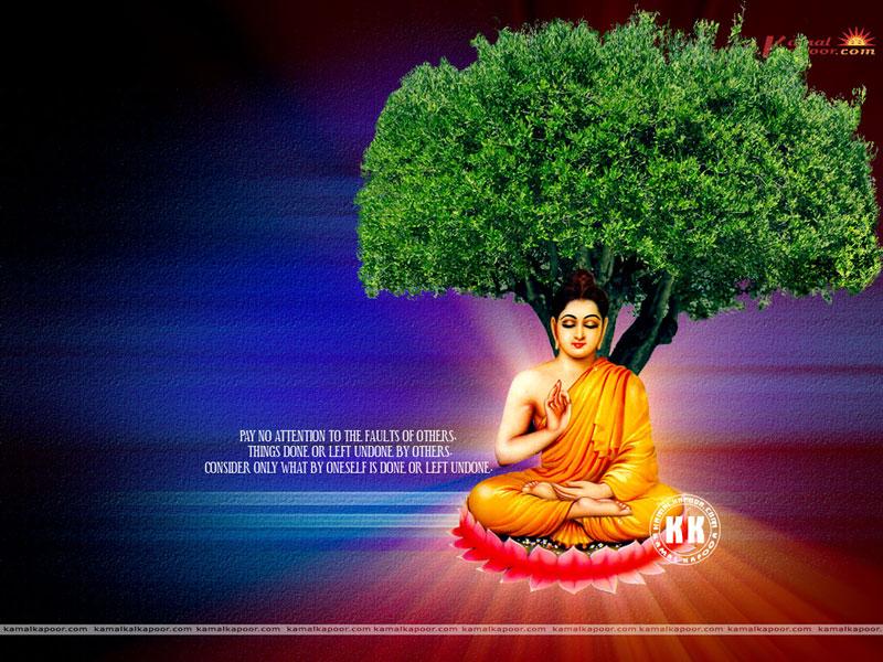 buddha Wallpaper 800x600