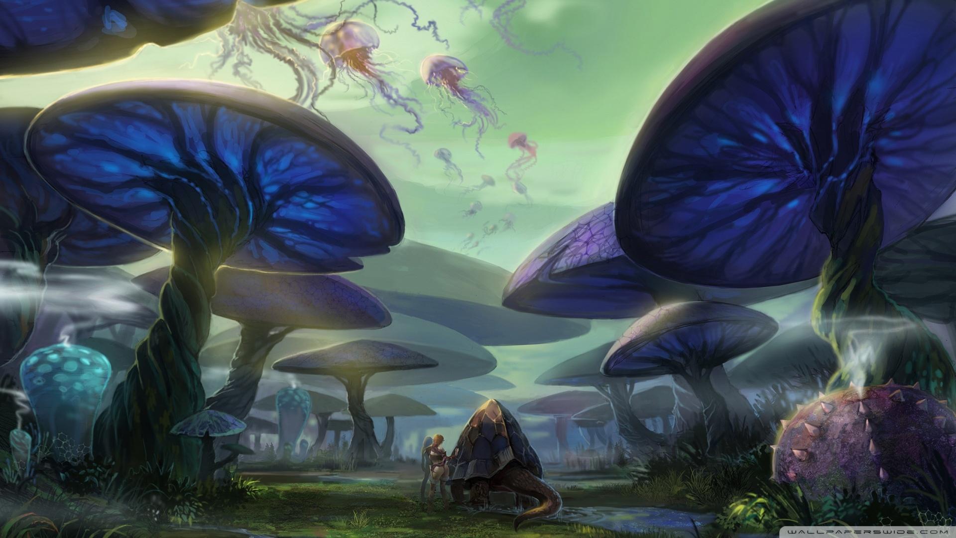 Mushroom Forest Wallpaper Wallpapersafari