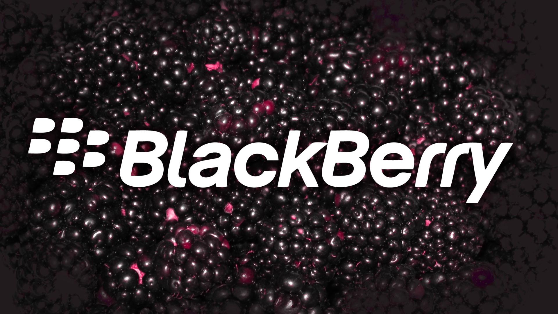 50+] BlackBerry Wallpaper Downloads on WallpaperSafari