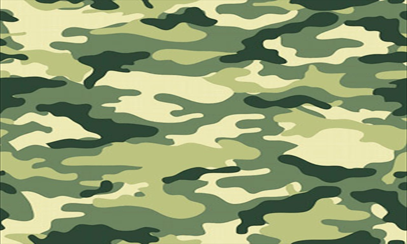 Amazoncom Camouflage Live Wallpaper Appstore for Android 800x480