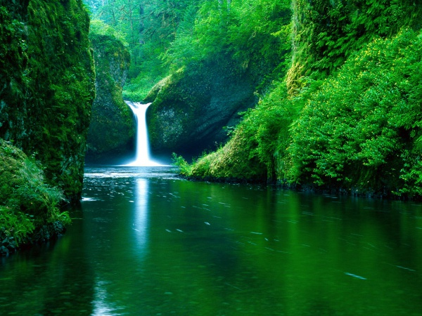 Bowl Falls Eagle Creek Wilderness Area Desktop Wallpapers 600x450