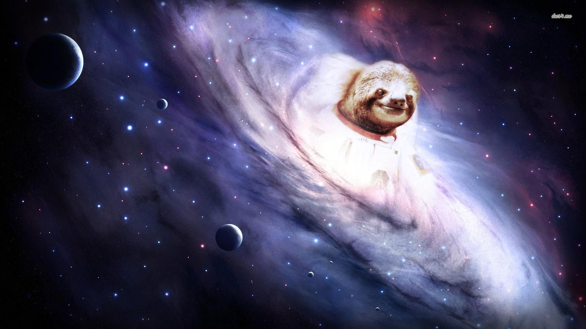 Sloth emerging from the galaxt wallpaper Digital Art wallpapers 1920x1080