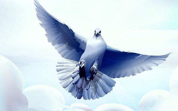 Free Download Holy Spirit Dove Backgrounds For Wallpaper Hd