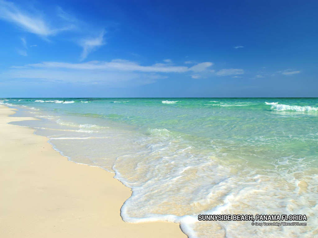 FLORIDA BEACHES FLORIDA BEACH PHOTO FREE Desktop background nature 1024x768