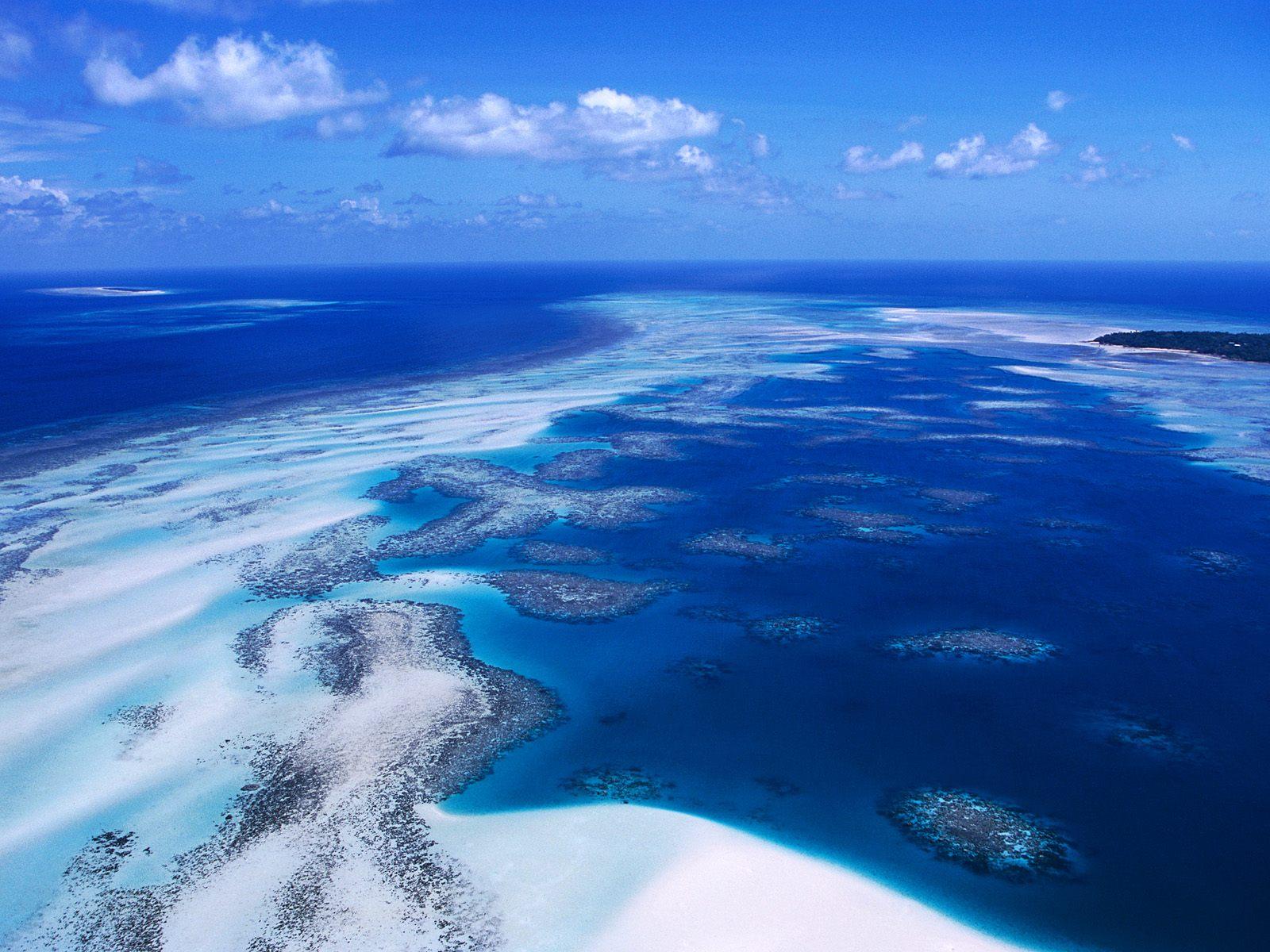 Coral Reef   Torres Strait Island   Australia Wallpaper 23340592 1600x1200