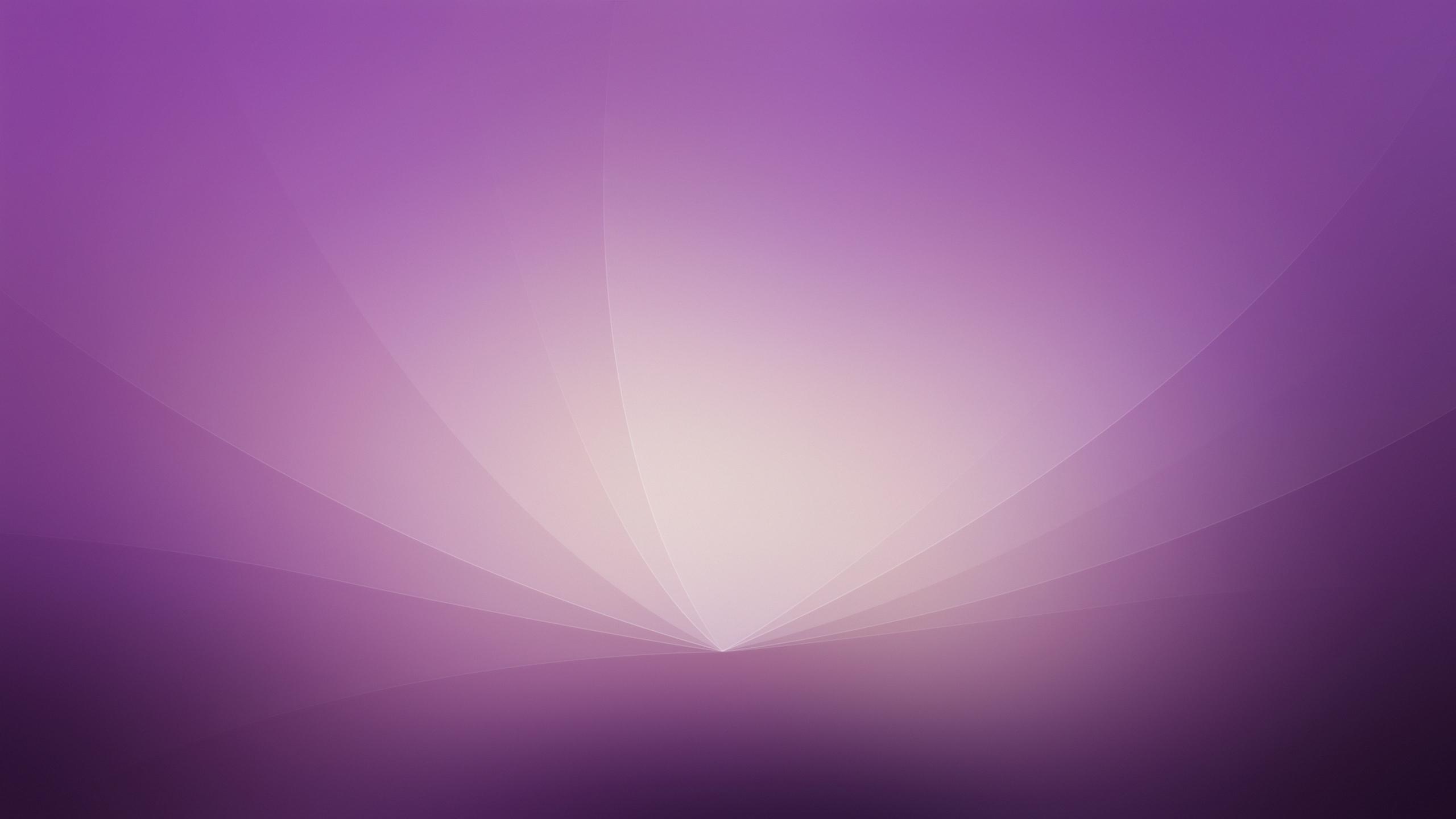 light purple background - HD2560×1440