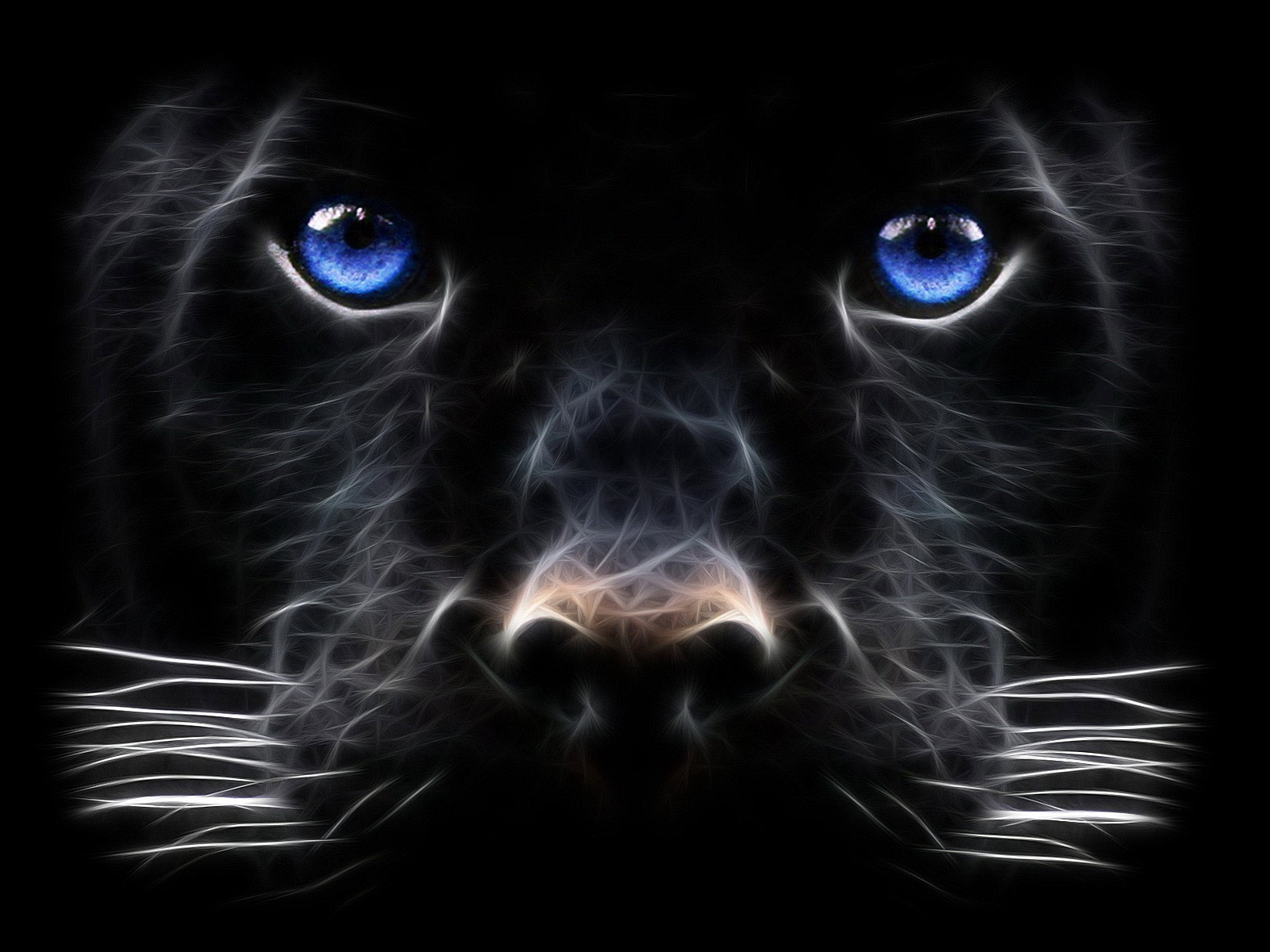 46 Black Panther Blue Eyes Wallpaper On Wallpapersafari