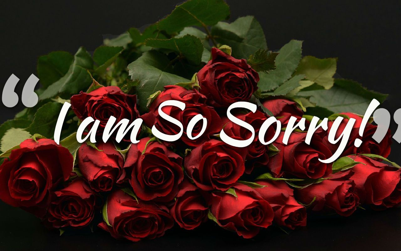 Sorry Images For Love   L Am So Sorry Wallpaper Backgrounds 1280x800