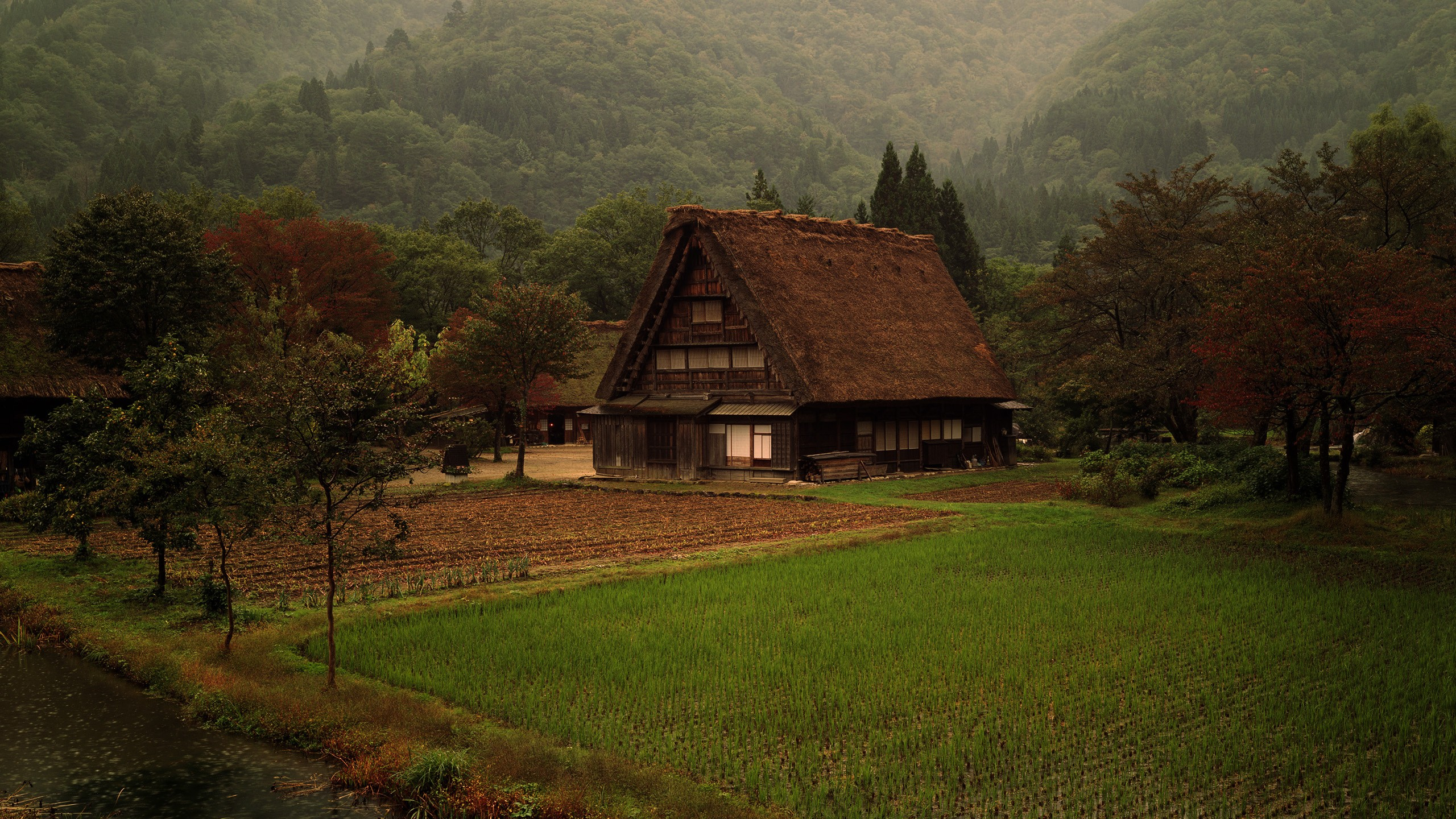 Japan mountains grass fields japanese farm Wallpapers 2560x1440